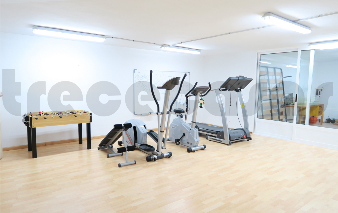Chalet lujo-torre conill-gimnasio
