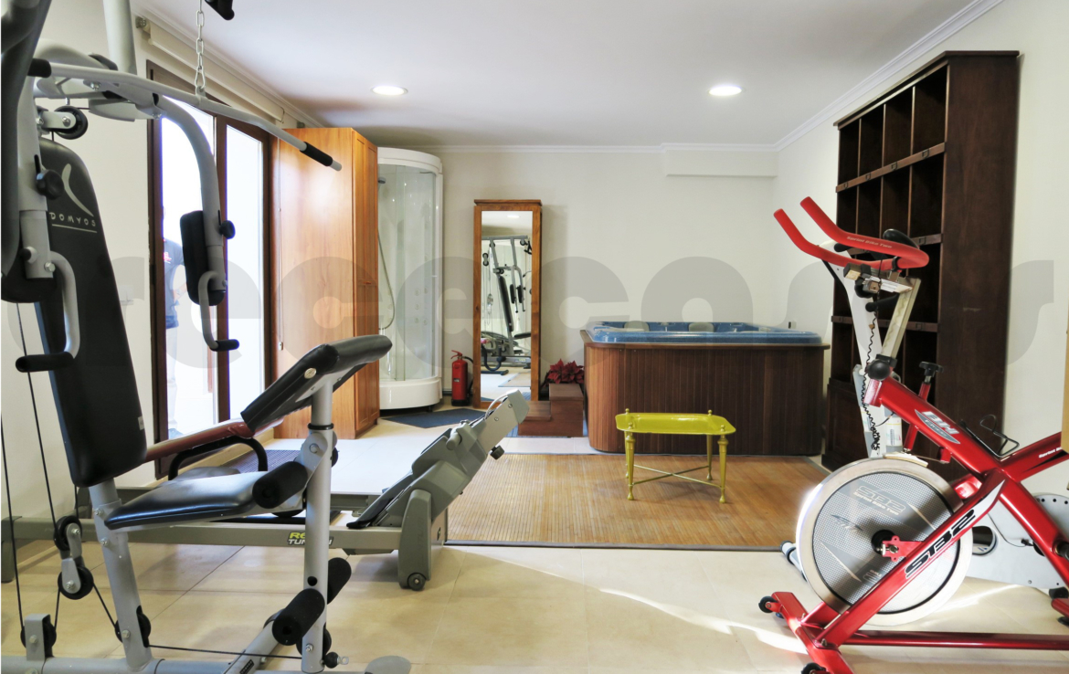 Chalet lujo-torre conill -gimnasio